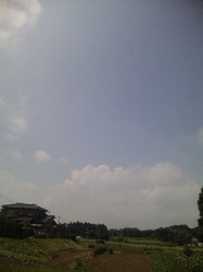 夏の雲.jpg
