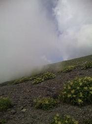 茶臼岳29.jpg